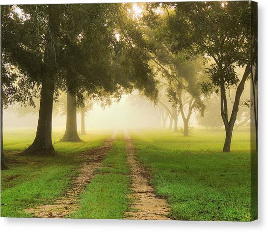 Journey Into Fall Canvas Print