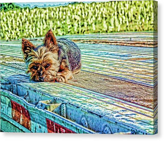 'jovie' Truckin Dogs Need Breaks Too Canvas Print