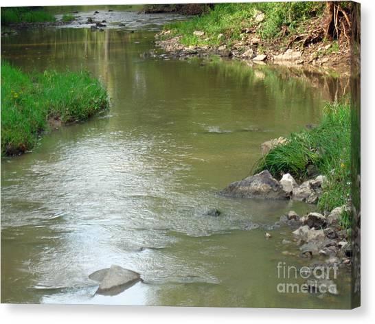 Jubilee Creek Canvas Print