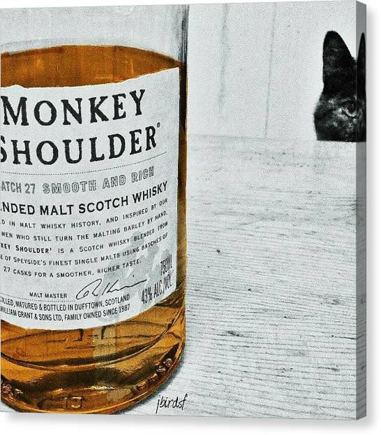 Scotch Canvas Print - Judgement Cat Judging Me by Jules S