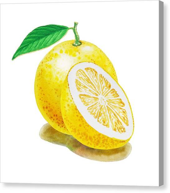 Grapefruits Canvas Print - Juicy Grapefruit by Irina Sztukowski
