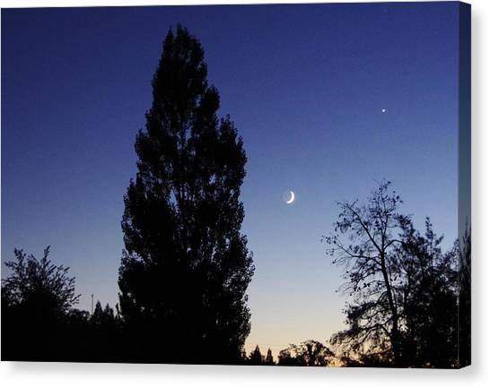 Julian Night Sky 2013 A Canvas Print