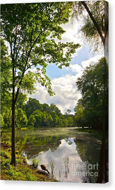 July Fourth Duck Pond With Goose Canvas Print