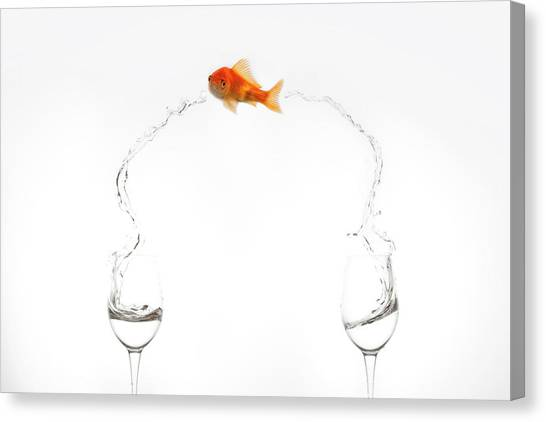 Goldfish Canvas Print - Jump! by Jose Beut