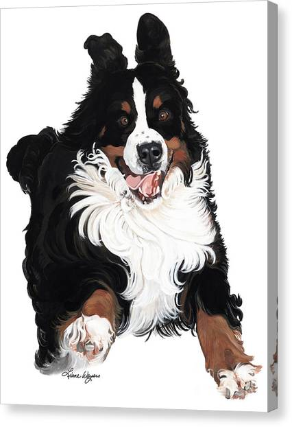Bernese Mountain Dogs Canvas Print - Jumpin Jack Flash by Liane Weyers