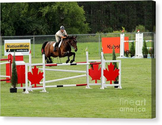 Jumping Canadian Fence Canvas Print