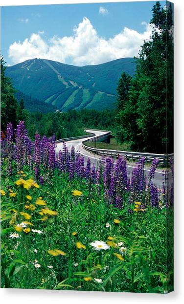 June In Franconia Notch Canvas Print