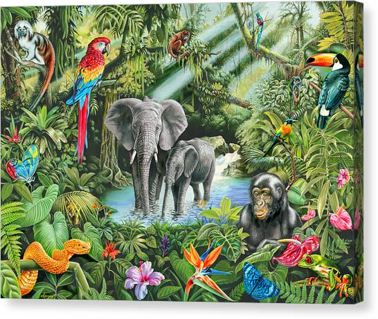 Toucans Canvas Print - Jungle by Mark Gregory