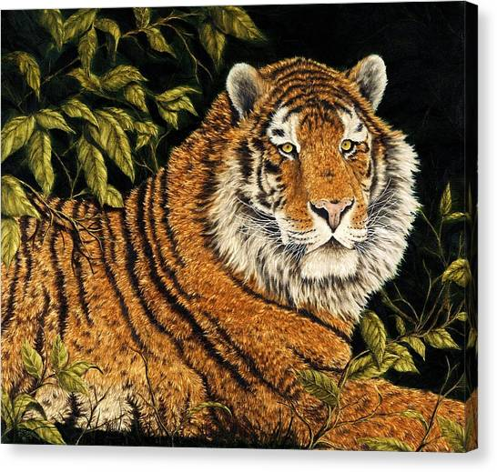 Siberian Cats Canvas Print - Jungle Monarch by Rick Bainbridge