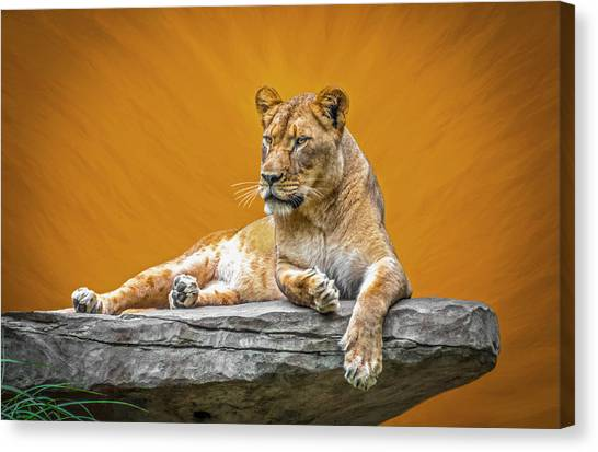 Jungle Queen Canvas Print