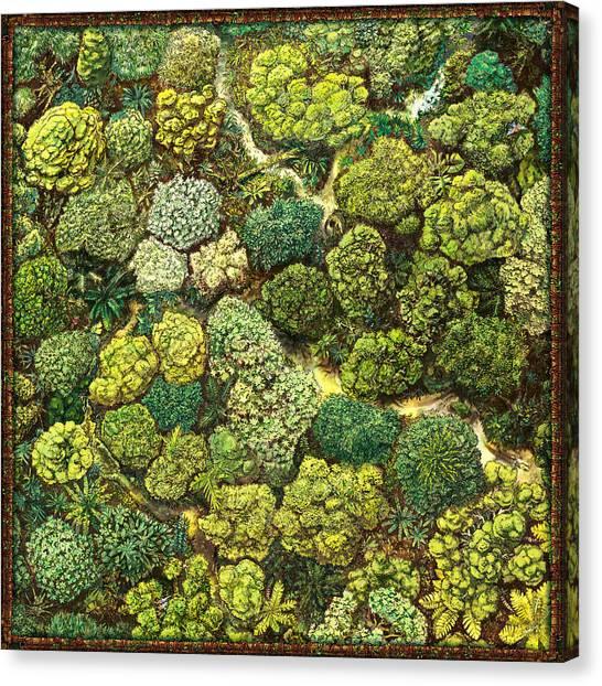 Jungle View Canvas Print
