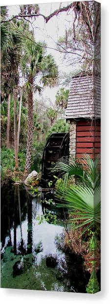 Jungle Water 2 Canvas Print by Will Boutin Photos