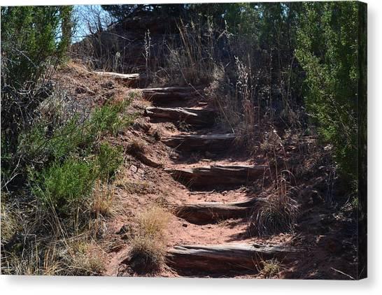 Juniper Ridge Steps Canvas Print