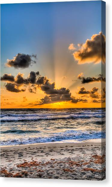 Juno Beach Sunrise Canvas Print