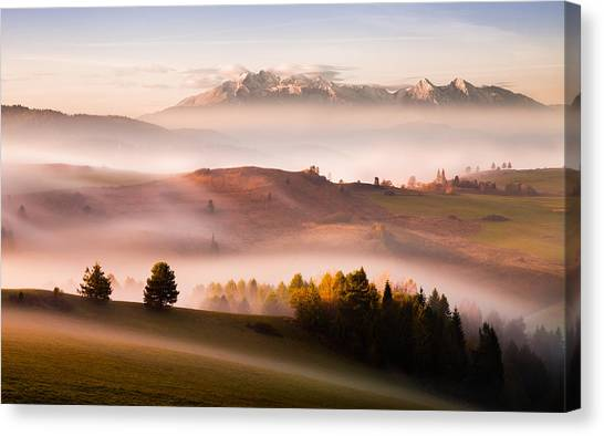 Just A Silence Canvas Print by