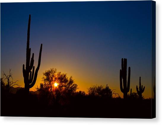 Desert Sunrises Canvas Print - Just Another Sonoran Desert Sunrise by James BO  Insogna