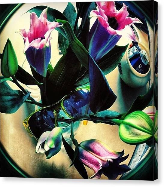 Mimosa Canvas Print - Just Because. @8liver @brigadaeyewear by Jake Sorbello