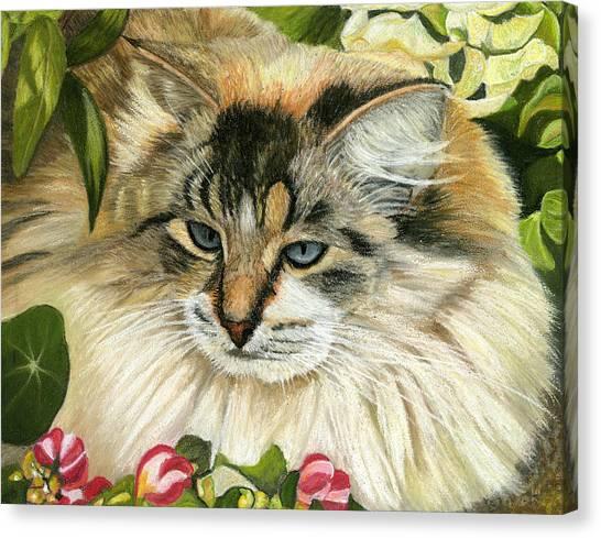 Just Chillin Canvas Print by Sarah Dowson