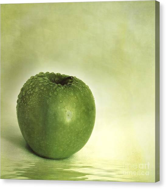 Still Life Canvas Print - Just Green by Priska Wettstein