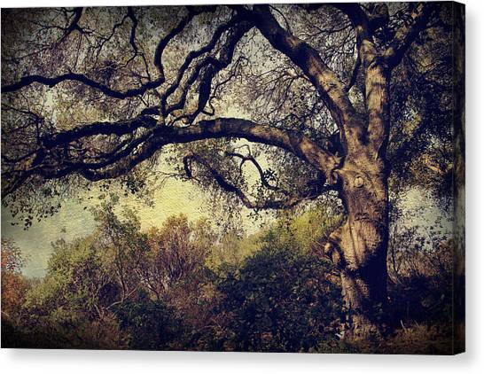 Uc Berkeley Canvas Print - Just How It Ought To Be by Laurie Search