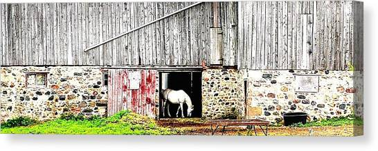 Just Me - Ontario - Canada Canvas Print