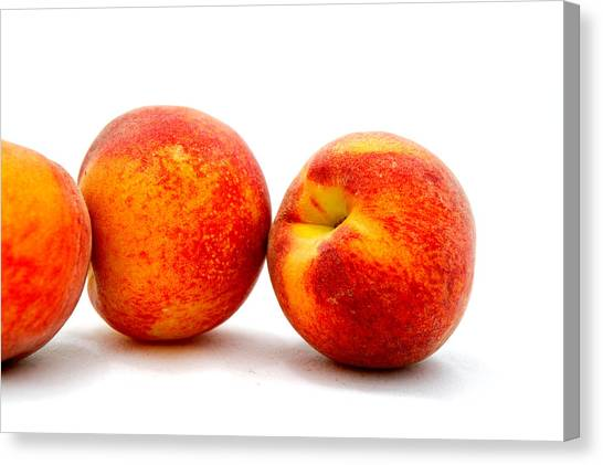 Just Peachy Canvas Print by Don Bendickson