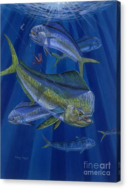 Spearfishing Canvas Print - Just Taken Off0025 by Carey Chen