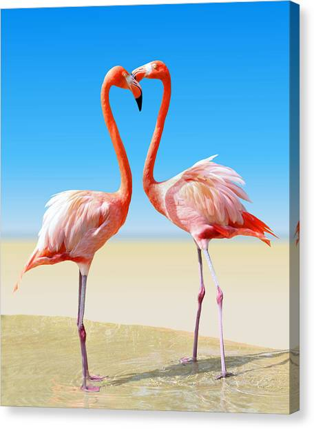 Flamingos Canvas Print - Just We Two by Kristin Elmquist