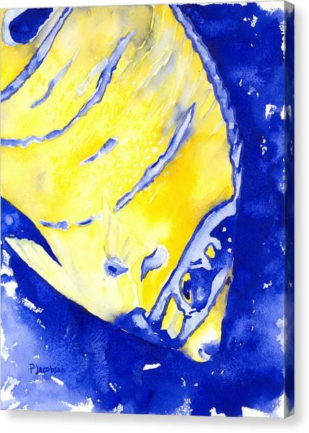 Juvenile Queen Angelfish Canvas Print