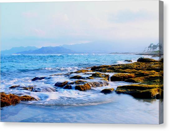 Kailua Bay Shoreline Canvas Print by Saya Studios