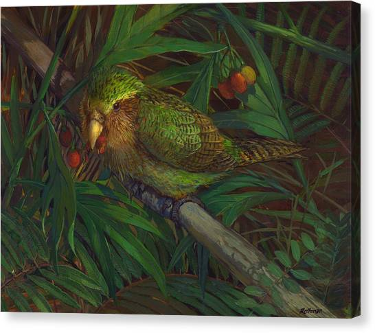 Kakapo Nighttime Feeding Canvas Print by ACE Coinage painting by Michael Rothman