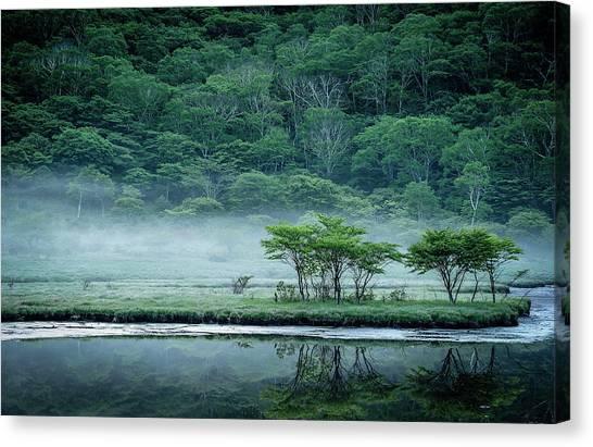 Marshes Canvas Print - Kakumanbuchi Marsh by Teruo Araya