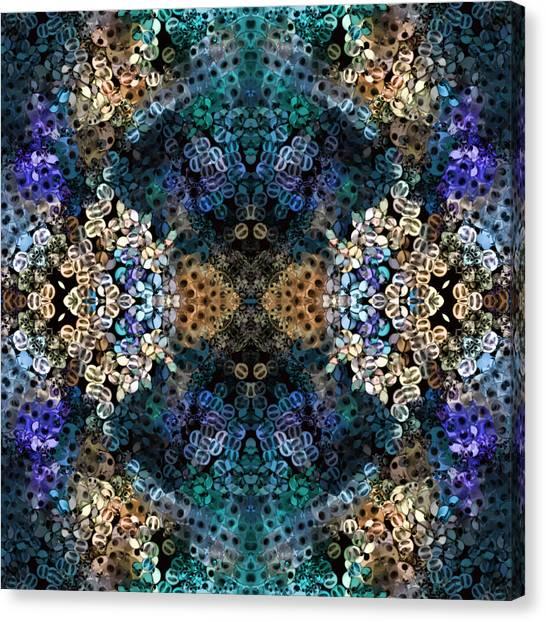 Kaleidoscopic 1 Canvas Print by Gabour Demans