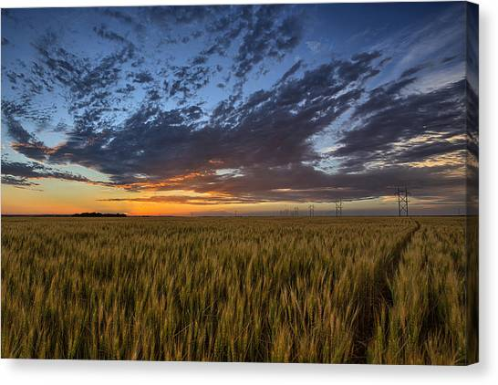 Sunset Canvas Print - Kansas Color by Thomas Zimmerman