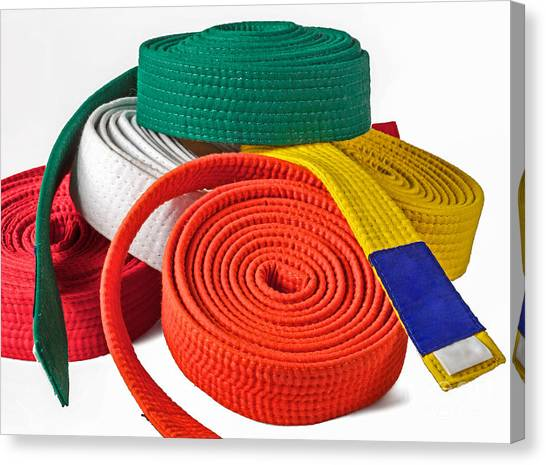 Jujitsu Canvas Print - Karate Belts Pile by Shaun Wilkinson