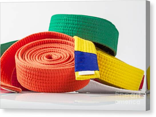 Jujitsu Canvas Print - Karate Belts by Shaun Wilkinson