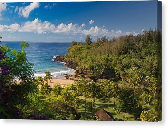 Kauai Allerton Estate Canvas Print by Sam Amato