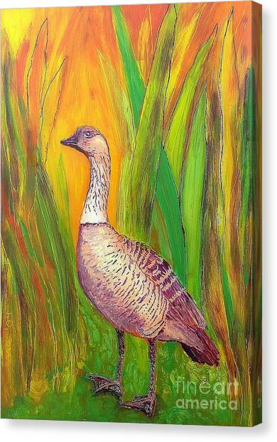 Kauai Nene Canvas Print
