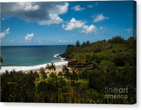 Kauai South Shore Jungle Canvas Print