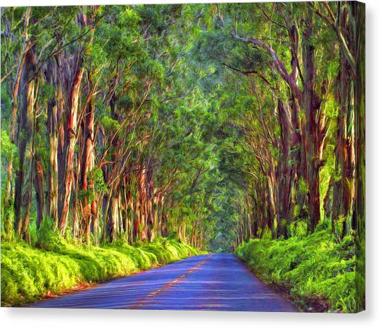 Mauna Loa Canvas Print - Kauai Tree Tunnel by Dominic Piperata
