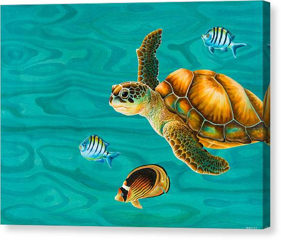 Good Luck Canvas Print - Kauila Sea Turtle by Emily Brantley