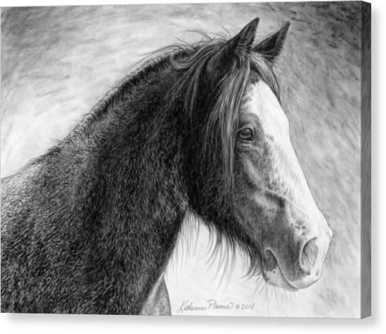 Draft Horses Canvas Print - Kaylee by Katherine Plumer