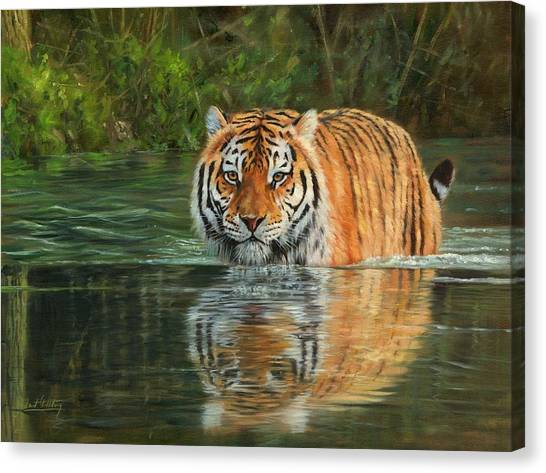 Siberian Cats Canvas Print - Keeping Cool by David Stribbling