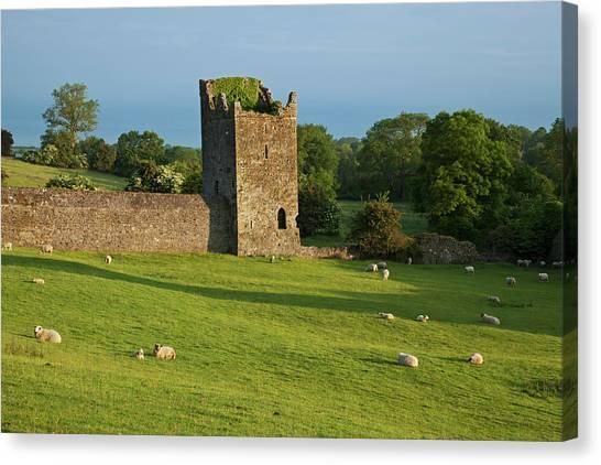 Kell Canvas Print - Kells Priory  Count Kilkenny, Ireland by Carl Bruemmer