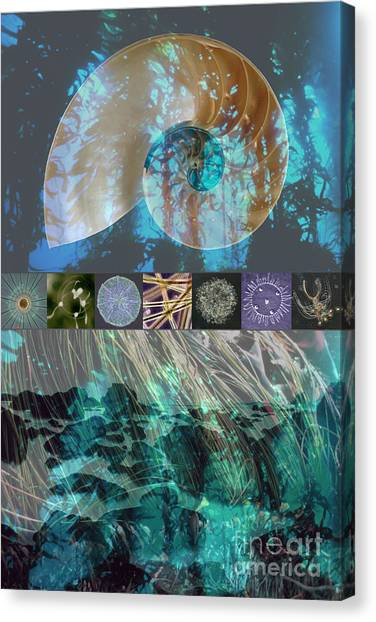 Kelp Forest Canvas Print - Kelp Forest by Ursula Freer