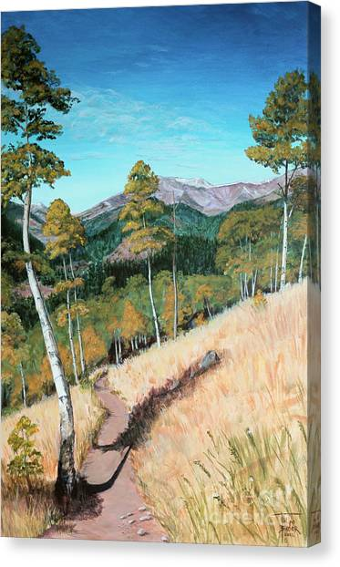 Kenosha Pass - Colrado Trail Canvas Print