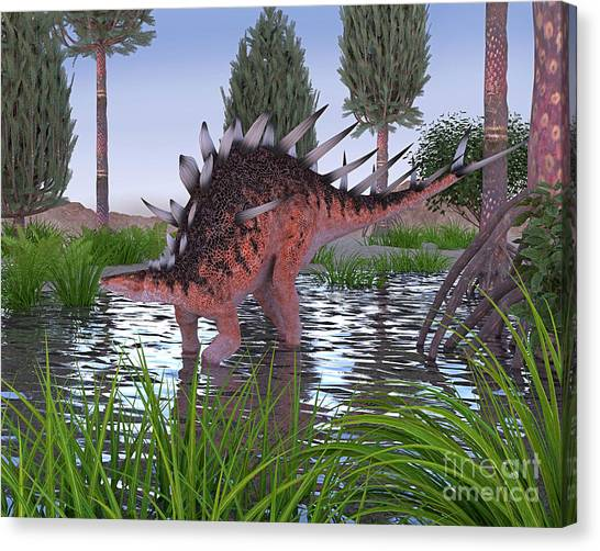 Kentrosaurus Canvas Print