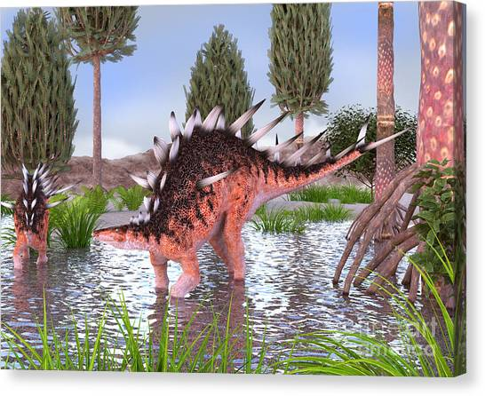 Kentrosaurus Pair In Water Canvas Print
