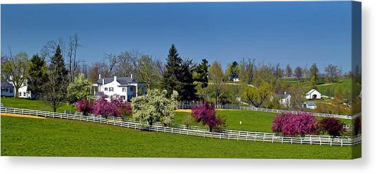 Kentucky Horse Farm Canvas Print