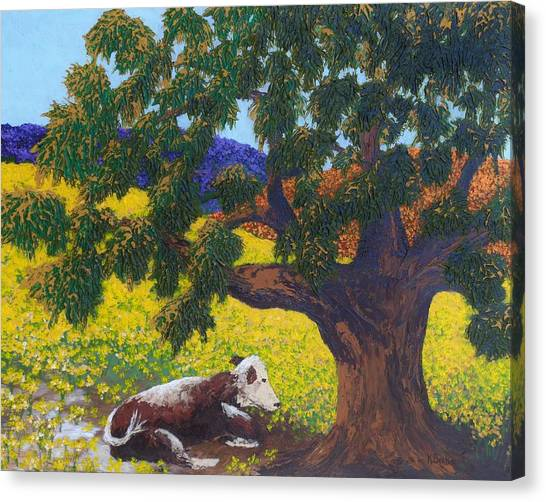 Kern County Cow Canvas Print